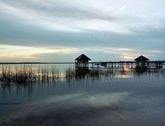 Les milieux lacustres de Madagascar, un habitat pour beaucoup d'espèces endémiques
