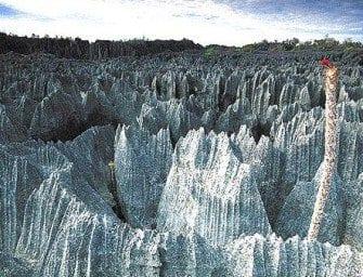 Tsingy de Madagascar déclaré Patrimoine Mondial par l'Unesco – Massifs calcaires