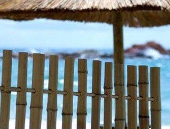 Fabrication d'un panneau de bambou