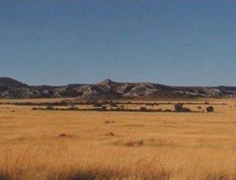 Les savanes herbeuses – Savanes de l'Ouest et brousse épineuse du Sud