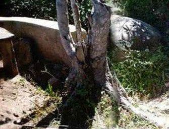 Ambohimanambola, devant la pièrre du sacrifice de kelimalaza